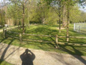 Weidezaun für Kleine Pferde Zaunbau by Axel F