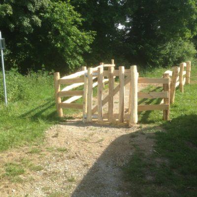 Tierpark Wildgehege sichere extensiv Haltung von Rindern