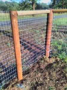Hund lauf nicht weg Zaun Multinet