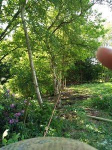 Freistellen der Zaunlinie zum Zaunbau