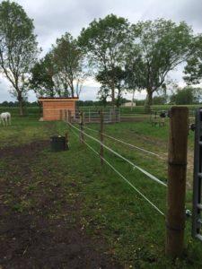 bestehenden Zaun hütesicher gestalten