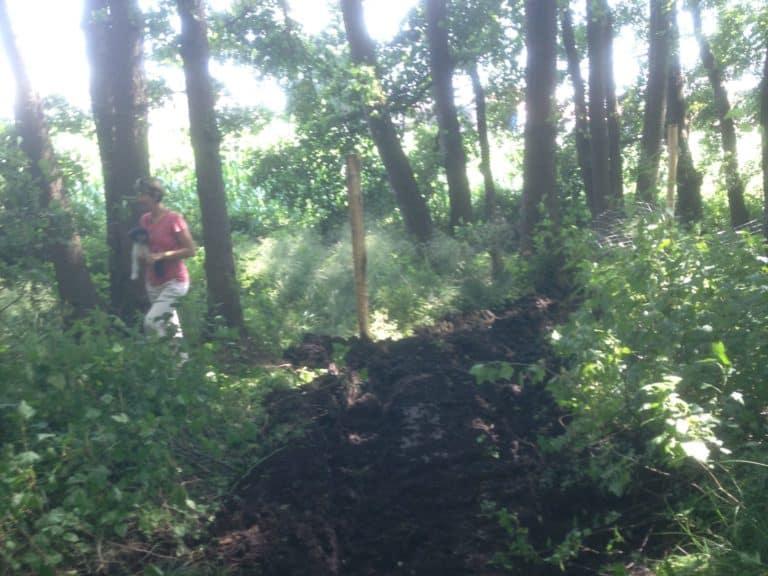 Sturmschadenbeseitigung Zaunbau Axel F in Ganderkesee