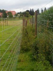 Supernet Dammwild Doppelzaun Zaunbau Axel F Gehege