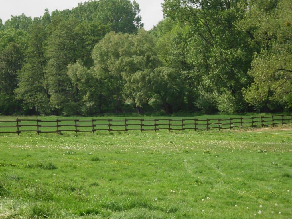 Pferdekoppel mit versetzten Halbriegeln