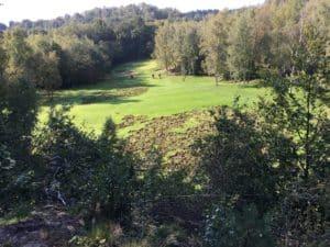 Hindernisse für golfer durch Wildschweine