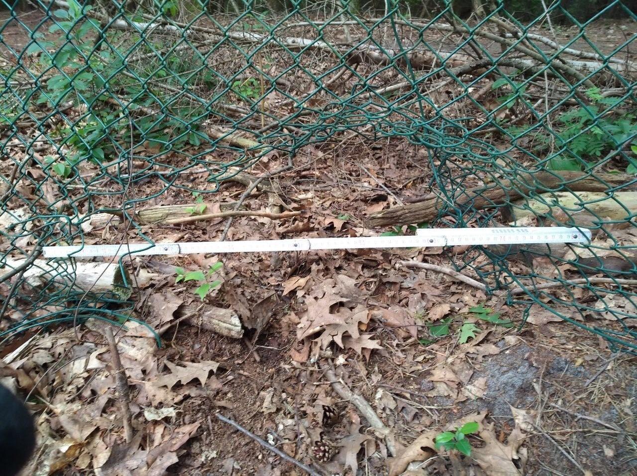 Wildschweinzaun Wildschweinschutzzaun Wildschweine zerstören Garten - wir können helfen