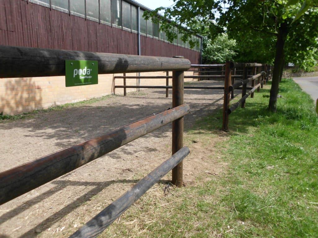 Halbriegelzaun für Pferde