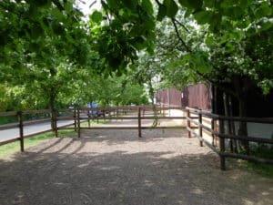 Paddock für Pferde
