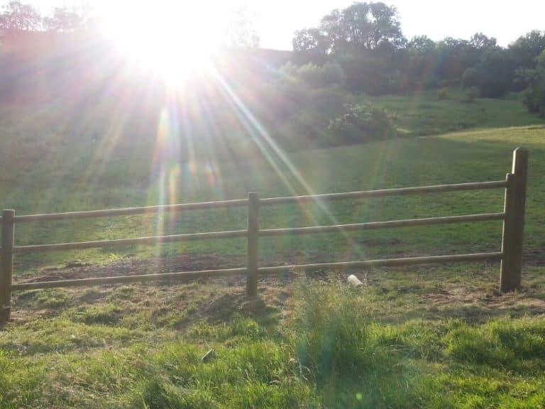 Weidezaun für rinder und Pferde