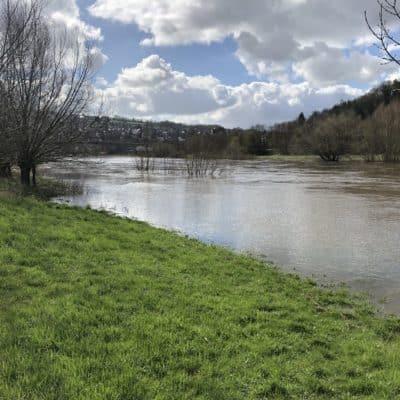 Hochwasserschutz Elektrischer Weidezaun