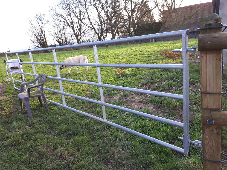 Zäune für Herdenschutzhunde