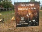 Schutzzaun für Kangale hütesicher