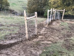Herausforderung Geflechtbau im Hang