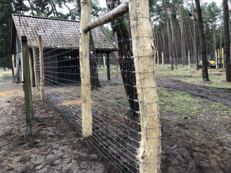 Gehegebau Elchgehege Wildpark Tierpark