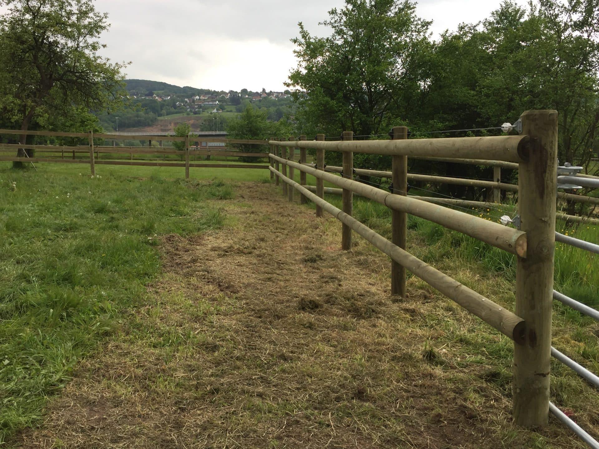 Koppelabtrennung zur Pferdehaltung