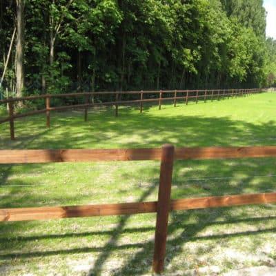 Koppel zur Pferdehaltung