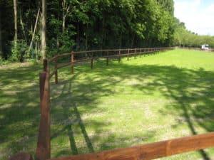 Weideeinzäunung für Pferde