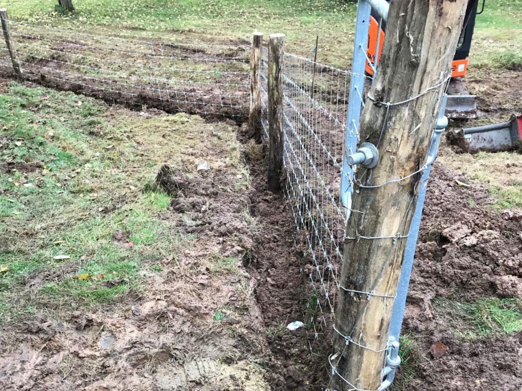 Untergrabschutz Schweinehaltung Freiland