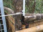 Törüberwachung Sabotageschutz Wildgehege