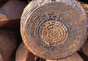 Bio Imprägnierung Alternative zu Steinkohle Teeröl